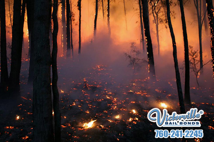 Tips to Avoid Sparking Wildfires in California's Winds